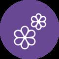 Feeling-icons-rond-paars-Tekengebied 15